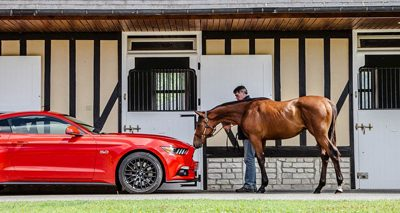Ford Mustang : la chevauchée sauvage à travers l'Europe.