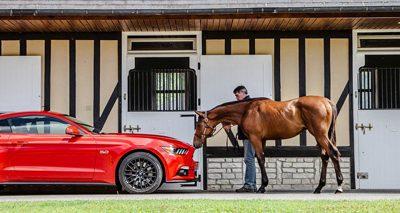 Ford Mustang : la chevauchée sauvage à travers l'Europe.