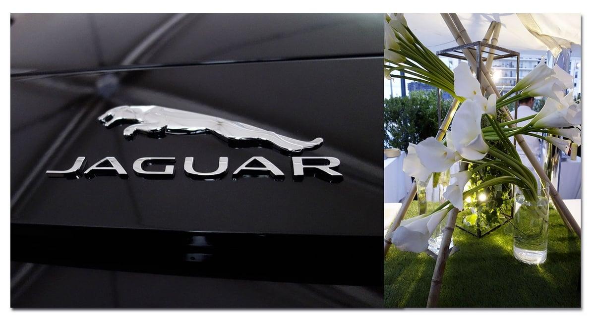 lancement de la nouvelle jaguar f type montpellier. Black Bedroom Furniture Sets. Home Design Ideas